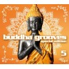 R�zn� interpreti - Buddha Grooves 5