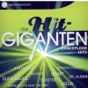 R�zn� interpreti - Die Hit Giganten Dancefloor Hits