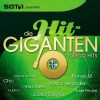 R�zn� interpreti - Die hit giganten-disco hits