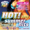 R�zn� interpreti - Hot summer hits 2008