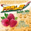 R�zn� interpreti - Italo Fresh Hits 2008 Version 2.0