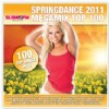 R�zn� interpreti - SpringDance 2011 Megamix Top100
