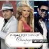 Sahara ft.Shaggy - Champagne